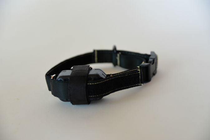 JP Electric collar in black